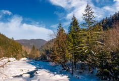 Tereblya river of Carpathian mountains in winter. Beautiful scenery in rural part of Synevir National park Royalty Free Stock Photography