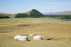 terelj gers Монголии Стоковые Изображения RF