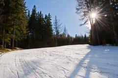 teren narta Obrazy Royalty Free