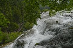 terenu jiuzhaigou sceniczna siklawa Fotografia Royalty Free