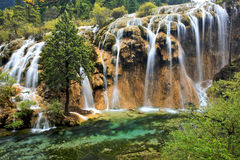 terenu jiuzhaigou sceniczna siklawa Zdjęcie Royalty Free