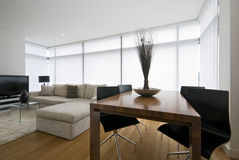 terenu projektanta wielka żywa nowożytna kanapa obrazy royalty free