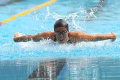 Teresa Alshammar. MILAN, ITALY - SEPT 21: Teresa Alshammar swimming champion during the performance september 21, 2008 in Milan, ITALY Stock Photo