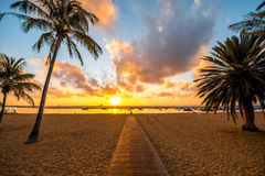 Teresitas beach in Santa Cruz de Tenerife. Beautiful view on Teresitas beach near Santa Cruz de Tenerife with palms and foot path on the sunrise Stock Photos