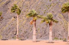 Teresitas Beach in Tenerife Royalty Free Stock Photography