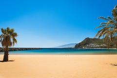 Teresitas för palmträdPlaya las strand, Tenerife Royaltyfria Foton