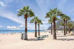 Teresitas strand nära Santa Cruz, Tenerife, kanariefågelöar, Spanien arkivbilder