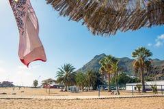 Teresitas strand, Tenerife ö, kanariefåglar Royaltyfria Bilder