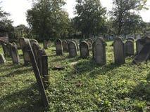 TERESVA, UKRAINA, WRZESIEŃ 18, 2017; Stary Żydowski cmentarz Zniweczony gravestones stojak wśród zielonej trawy Na one - inscrip Zdjęcia Stock
