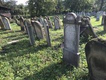 TERESVA, UKRAINA, WRZESIEŃ 18, 2017; Stary Żydowski cmentarz Zniweczony gravestones stojak wśród zielonej trawy Na one - inscrip Fotografia Royalty Free