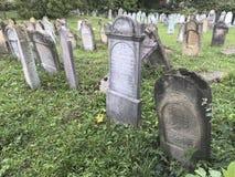 TERESVA, UKRAINA, WRZESIEŃ 18, 2017; Stary Żydowski cmentarz Zniweczony gravestones stojak wśród zielonej trawy Na one - inscrip Obraz Stock