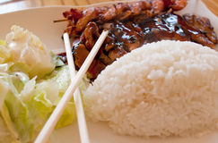 Teriyaki. With rice and chiken Royalty Free Stock Photos