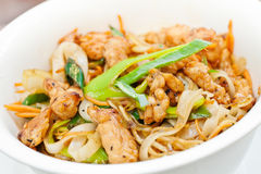 Teriyaki chicken with noodles and spring onions Royalty Free Stock Images
