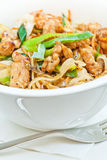 Teriyaki chicken with noodles and spring onions Royalty Free Stock Image