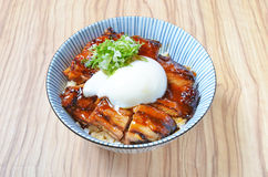 Teriyaki chicken rice bowl Royalty Free Stock Photography