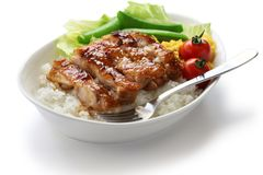 Teriyaki chicken on rice Royalty Free Stock Photography