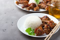 Teriyaki chicken with rice royalty free stock images