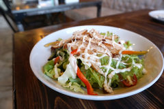 Teriyaki chicken salad Stock Photography