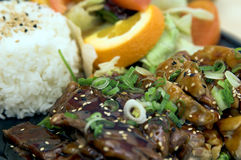 Teriyaki Combo Plate stock images