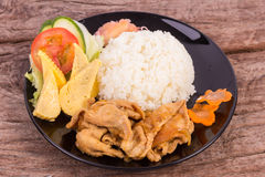 Teriyaki pork with rice Royalty Free Stock Photography