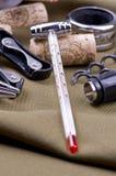 Termómetro del vino Imagen de archivo libre de regalías