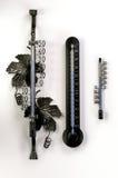 termómetros Imagen de archivo libre de regalías