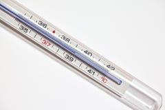 Termômetro da febre Fotos de Stock Royalty Free