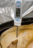 Termômetro de carne Imagem de Stock