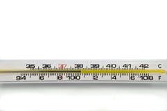 Termômetro do fundo. Foto de Stock