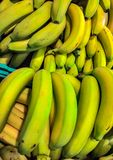 The term banana indicates the false berry of the banana plant, of the Musaceae family. The fruit develops in the edible species a. Nd varieties in a series of royalty free stock photography