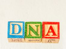 The term DNA visually displayed. On a white background using colorful wooden toy blocks image with copy space in landscape format royalty free stock image
