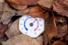 Termômetro nas folhas Imagens de Stock Royalty Free