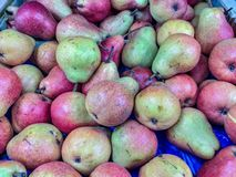 The term pear refers to the fruit. In reality it is a pommel, a false fruit of the plants of the genus Pyrus to which many different species belong. Some of the royalty free stock photography