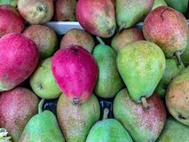 The term pear refers to the fruit. In reality it is a pommel, a false fruit of the plants of the genus Pyrus to which many different species belong. Some of the stock photos