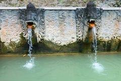 Termal hot springs on Bali Royalty Free Stock Photos