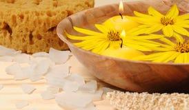 TERMAS com flores amarelas Fotografia de Stock