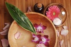 Termas de bambu Foto de Stock Royalty Free