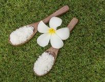 Termas de sal da massagem dos termas no carretel de madeira com flor, Tailândia Imagens de Stock Royalty Free