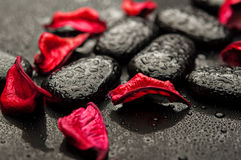 Termas do fundo. pedras pretas e pétalas vermelhas Fotografia de Stock Royalty Free