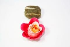 Termas do zen de Rosa Imagens de Stock