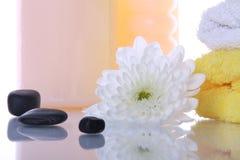 Termas e flor da charneca Fotos de Stock Royalty Free