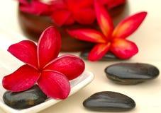 Termas e wellness Imagem de Stock Royalty Free