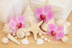 Termas luxuosos Foto de Stock Royalty Free