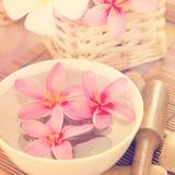 Termas tropicais com flores do Frangipani. Fotos de Stock