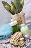 Termas verdes Imagem de Stock Royalty Free