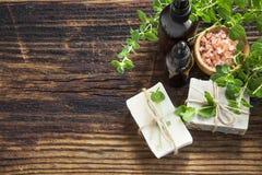 Termas verdes naturais com sabão feito a mão, garrafas de óleo e folhas Foto de Stock