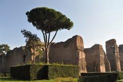 Terme di Caracalla. Caracalla's baths - Rome (Italy Stock Photo