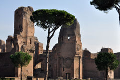 Terme di Caracalla. Caracalla's baths - Rome (Italy Stock Photos