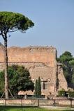 Terme Di Caracalla Stock Foto
