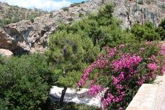 Termiczny jezioro na południowym wybrzeżu stały ląd Grecja 06 20 2014 Aktywny rekreacyjny odpoczynek w nawadnia gorące wiosny Fotografia Royalty Free